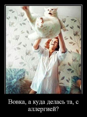 http://sh.uploads.ru/t/hMiOH.jpg