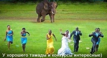 http://sh.uploads.ru/t/hOP2j.jpg