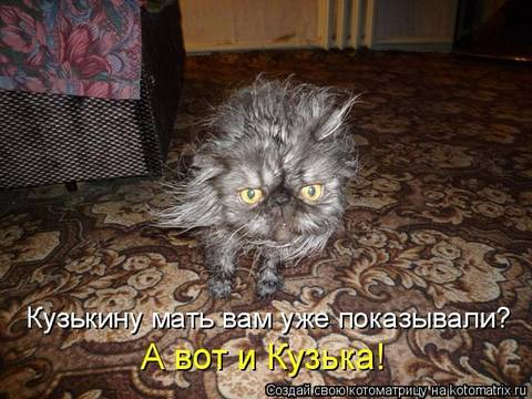 http://sh.uploads.ru/t/hRQOb.jpg