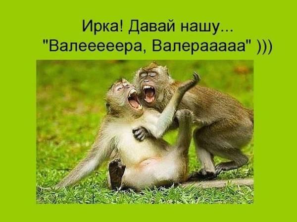 http://sh.uploads.ru/t/hWqtG.jpg