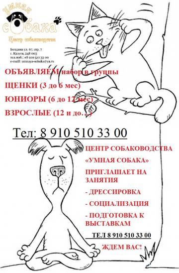 http://sh.uploads.ru/t/iJ2Vg.jpg
