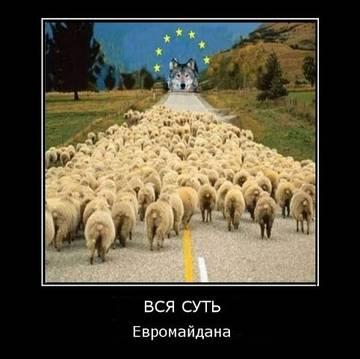 http://sh.uploads.ru/t/iNxJV.jpg