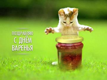 http://sh.uploads.ru/t/iP0bI.jpg