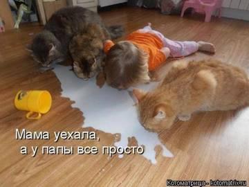 http://sh.uploads.ru/t/iW6Zs.jpg