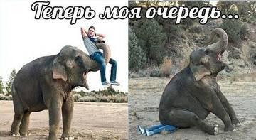 http://sh.uploads.ru/t/j74R1.jpg