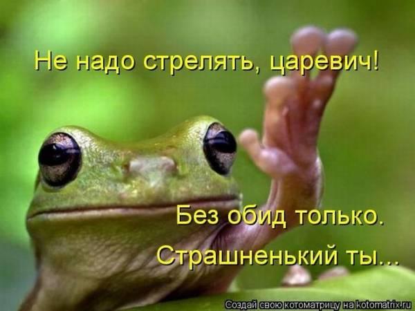http://sh.uploads.ru/t/jRDzg.jpg