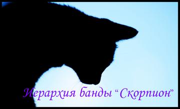 http://sh.uploads.ru/t/k7MG9.png