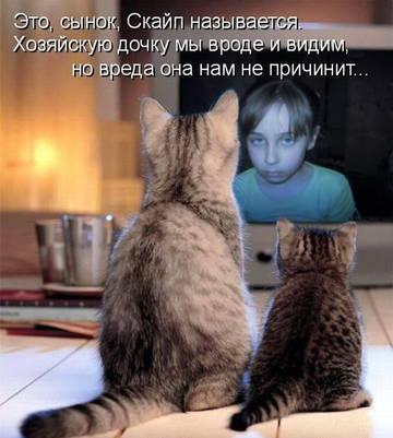 http://sh.uploads.ru/t/kAeHb.jpg