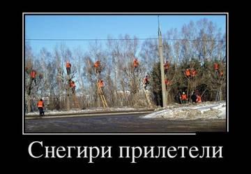 http://sh.uploads.ru/t/khD0t.jpg