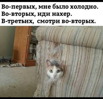 http://sh.uploads.ru/t/kr6R0.jpg