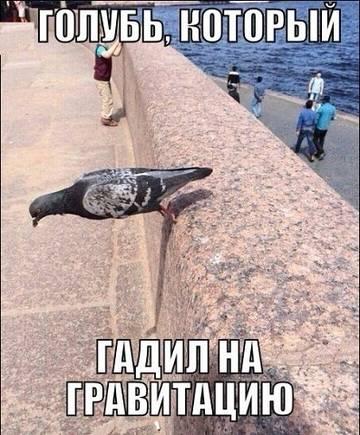 http://sh.uploads.ru/t/ksTbD.jpg