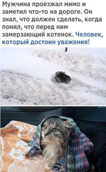 http://sh.uploads.ru/t/lARe8.jpg