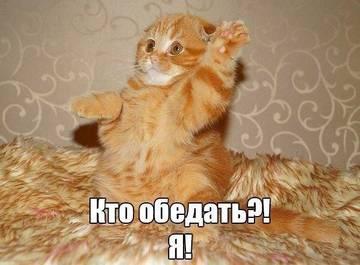 http://sh.uploads.ru/t/mb7Ja.jpg