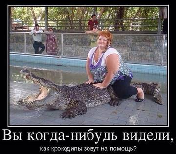 http://sh.uploads.ru/t/miRxI.jpg