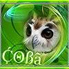 http://sh.uploads.ru/t/n9YMX.jpg