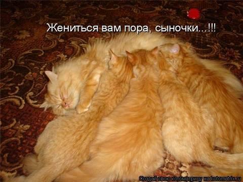 http://sh.uploads.ru/t/nOlR5.jpg