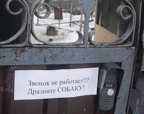 http://sh.uploads.ru/t/nb9Ll.jpg