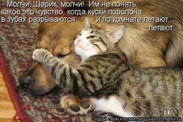 http://sh.uploads.ru/t/njE4P.jpg