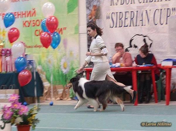 http://sh.uploads.ru/t/oIX67.jpg