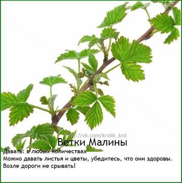 http://sh.uploads.ru/t/oMU3C.jpg