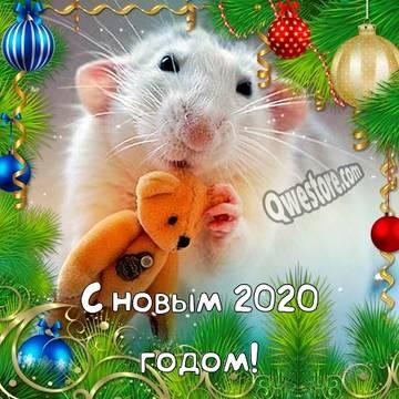 http://sh.uploads.ru/t/otV0d.jpg