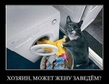 http://sh.uploads.ru/t/pEk8U.jpg