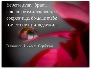 http://sh.uploads.ru/t/pHt6j.jpg