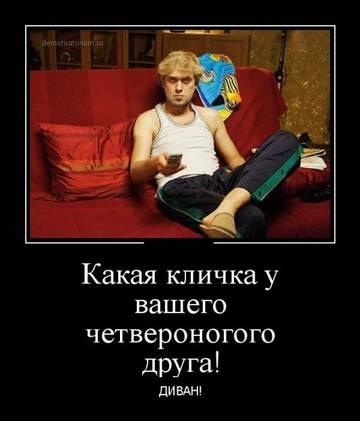 http://sh.uploads.ru/t/pJ7XN.jpg