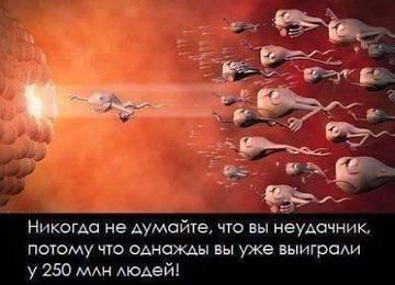 http://sh.uploads.ru/t/pN2m1.jpg