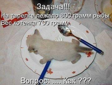 http://sh.uploads.ru/t/qBw4m.jpg