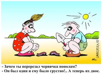 http://sh.uploads.ru/t/qGb5p.jpg