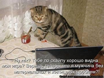 http://sh.uploads.ru/t/qN9r7.jpg