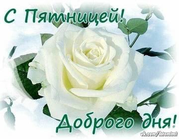 http://sh.uploads.ru/t/qQoE6.jpg