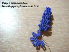 http://sh.uploads.ru/t/qRV4F.jpg