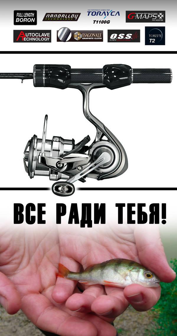 http://sh.uploads.ru/t/qV7yF.jpg