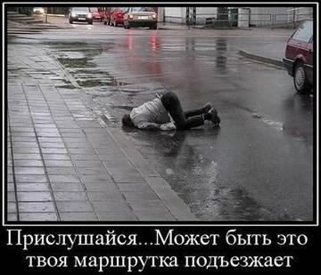 http://sh.uploads.ru/t/qdC7h.jpg