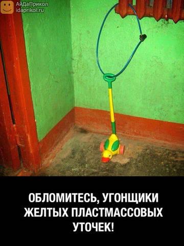 http://sh.uploads.ru/t/qrbjS.jpg