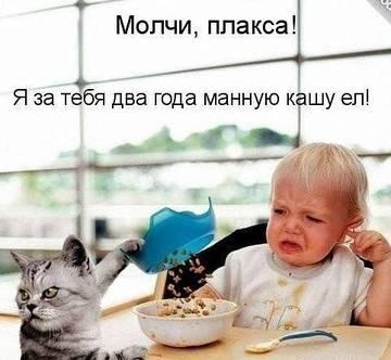 http://sh.uploads.ru/t/rIc3W.jpg