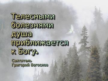 http://sh.uploads.ru/t/rRLFu.jpg