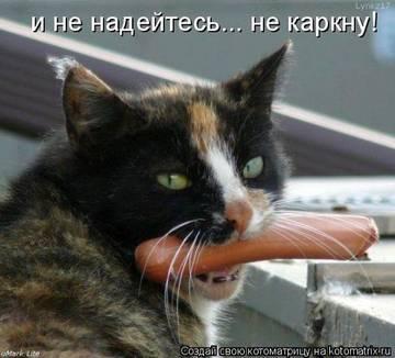 http://sh.uploads.ru/t/rb7s4.jpg