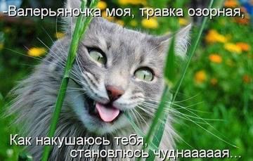 http://sh.uploads.ru/t/ruRyp.jpg