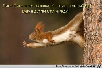 http://sh.uploads.ru/t/sAKj1.jpg