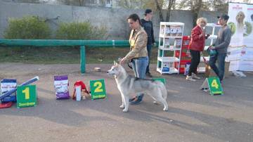 http://sh.uploads.ru/t/sI8Z9.jpg
