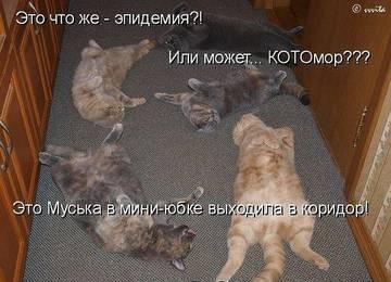 http://sh.uploads.ru/t/sIPXk.jpg