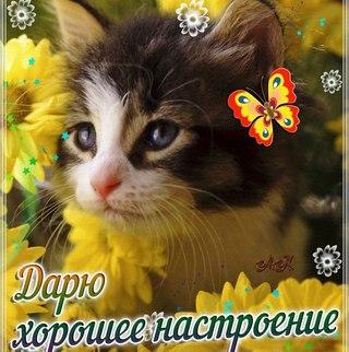 http://sh.uploads.ru/t/sewal.jpg