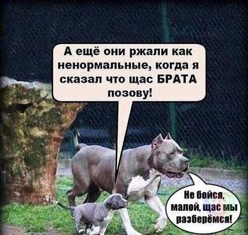 http://sh.uploads.ru/t/tAfW5.jpg