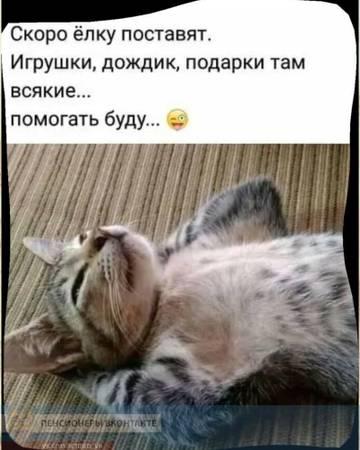 http://sh.uploads.ru/t/tPJKi.jpg