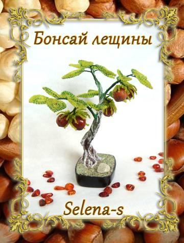 http://sh.uploads.ru/t/tXBFQ.jpg