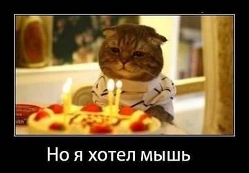 http://sh.uploads.ru/t/twM25.jpg