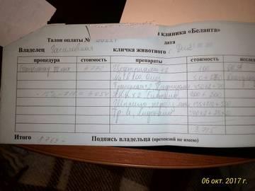 http://sh.uploads.ru/t/uZoUx.jpg
